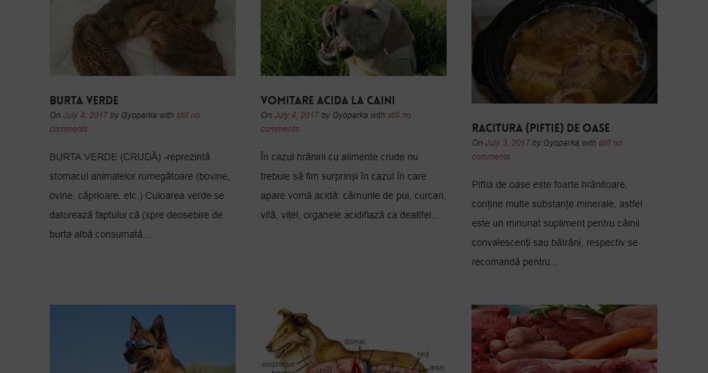 blog-page-overlay